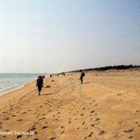 Puri Beach 3/31 by Tripoto