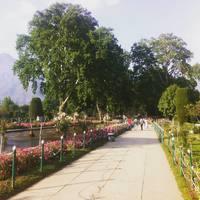 Mughal Garden 3/6 by Tripoto