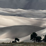 Great Sand Dunes National Park 3/3 by Tripoto