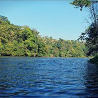 Pookode Lake 3/6 by Tripoto
