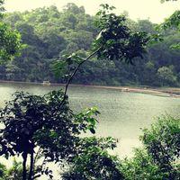 Pookode Lake 4/6 by Tripoto