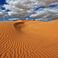 Desert National Park 3/3 by Tripoto