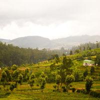 Anamudi Peak 3/3 by Tripoto