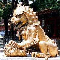 Forbidden City-The Palace Museum 3/29 by Tripoto