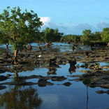 Aldabra Islands 2/3 by Tripoto