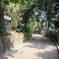 Lugard Road 2/2 by Tripoto