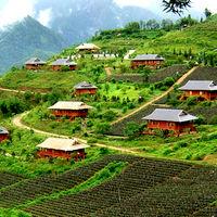 Sapa Vietnam ( Sapa Vietnam Daily Trekking Tours 2/2 by Tripoto
