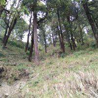 Himalaya Darshan 3/6 by Tripoto