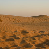 Sam Sand Dunes 4/57 by Tripoto