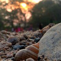 Sangam Chetti 2/2 by Tripoto