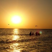Mandvi Beach 4/39 by Tripoto