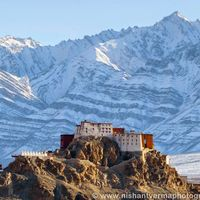Thiksey Monastery 5/68 by Tripoto