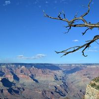 Grand Canyon National Park 4/27 by Tripoto