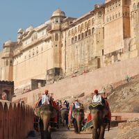 Amer Fort 2/159 by Tripoto