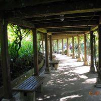 Singapore Botanic Gardens 5/7 by Tripoto