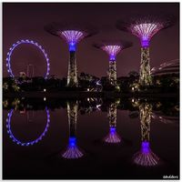Gardens By The Bay 5/24 by Tripoto