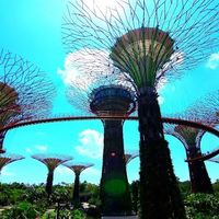 Gardens By The Bay 2/24 by Tripoto