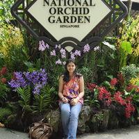 Singapore Botanic Gardens 2/7 by Tripoto