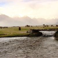 Leh Ladakh 3/338 by Tripoto