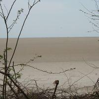 Dhanushkodi Beach 3/37 by Tripoto