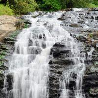 Abbey Falls Walking Trail 5/8 by Tripoto