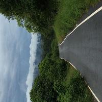 Chalakudy - Anamala Road 3/3 by Tripoto
