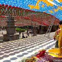 Bongeunsa Temple 2/12 by Tripoto
