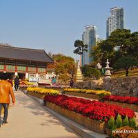 Bongeunsa Temple 4/12 by Tripoto