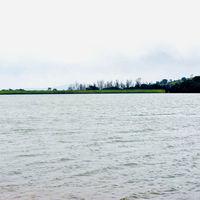 Old Kaas Lake Road 5/5 by Tripoto