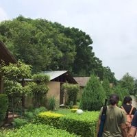 The Corbett View Resort 2/12 by Tripoto