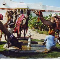 Hotel Bhadrawati Palace 2/2 by Tripoto