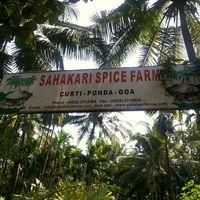 Sahakari Spice Farm 5/5 by Tripoto