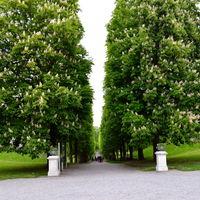 Drottningholm Palace 4/19 by Tripoto