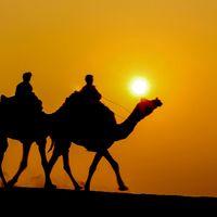 Sam Sand Dunes Desert Jaisalmer 3/77 by Tripoto