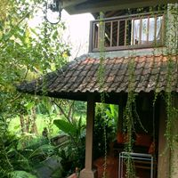 Jati Home Stay 2/2 by Tripoto