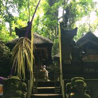 Sacred Monkey Forest Sanctuary 5/15 by Tripoto