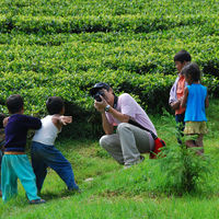 Temi Tea Garden 3/9 by Tripoto