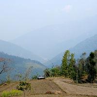 Bara Mangwa Farmhouse 5/5 by Tripoto
