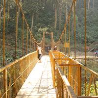 Abbey Falls Walking Trail 4/8 by Tripoto