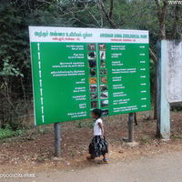 Arignar Anna Zoological Park 2/3 by Tripoto