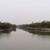 Sundarbans National Park 4/9 by Tripoto