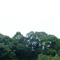 Umdikian falls 3/6 by Tripoto