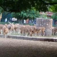 Animal and bird sanctuary  4/4 by Tripoto