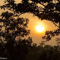 Bandhavgarh National Park 5/9 by Tripoto
