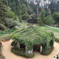 Botanical Gardens 5/16 by Tripoto