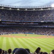 Yankee Stadium 2/3 by Tripoto