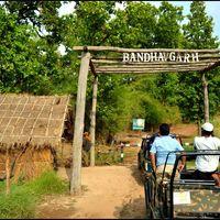 Bandhavgarh National Park 3/10 by Tripoto