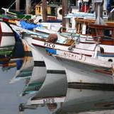 Fisherman's Wharf 3/9 by Tripoto