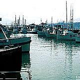 Fisherman's Wharf 2/9 by Tripoto