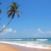 Miramar Beach 3/8 by Tripoto